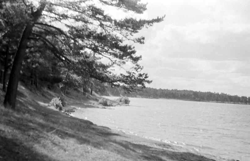 1960_Necko (4)