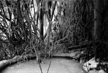 1969_zimowe_fantazje (12)