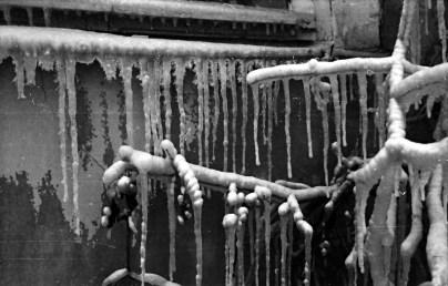 1969_zimowe_fantazje (9)