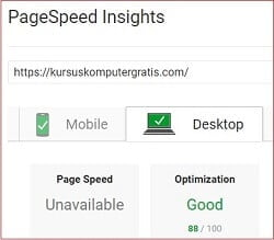 hasil test pagespeed insights.jpg