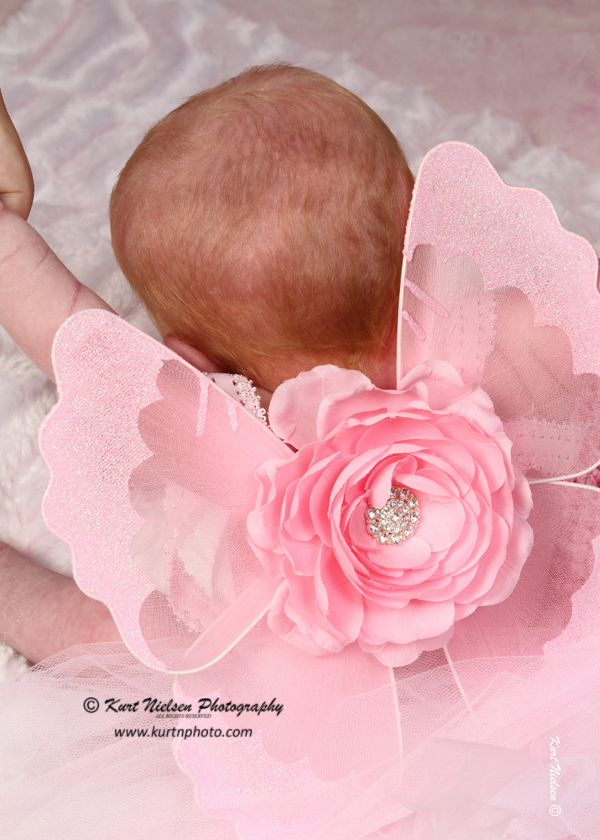 angel wings for newborn photos