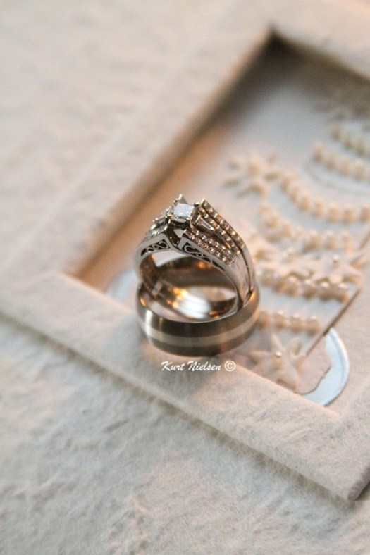 Wedding Rings and Guest Book