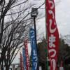 【第60回】4/5~5/5まで久留米市つつじ祭りが百年公園で開催されるぞ!