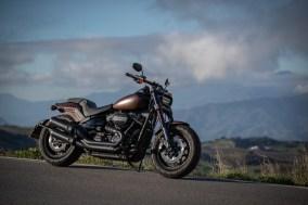 Kurvenfahrer.at Harley-Davidson-5805