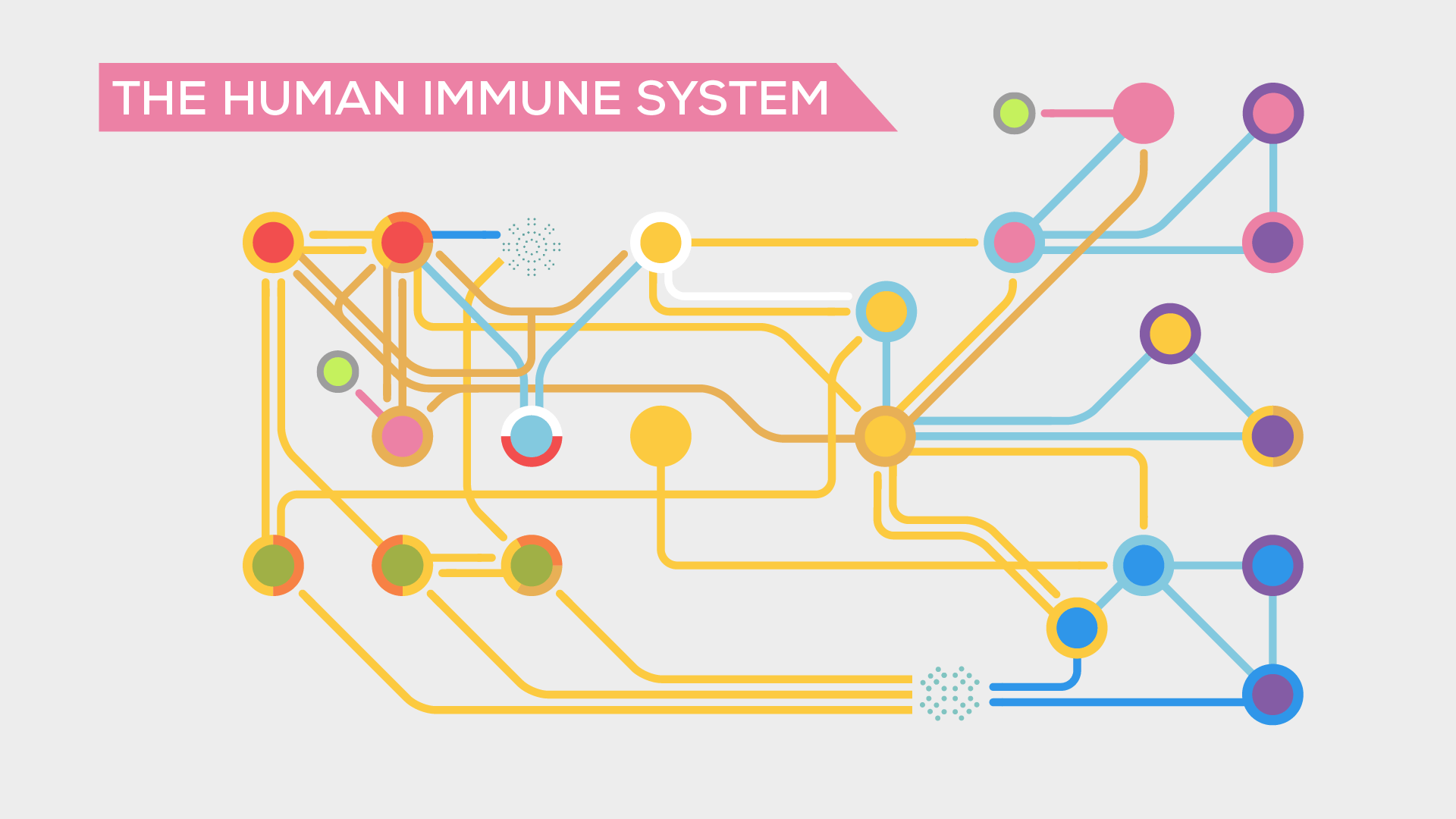 In A Nutshell Kurzgesagt The Immune System Explained