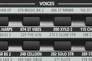 KP200 - Voces