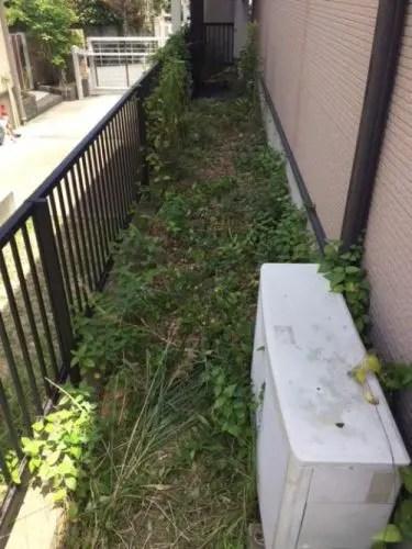 エアコンの室外機にからみつく雑草を除去するだけで電気代が安くなる