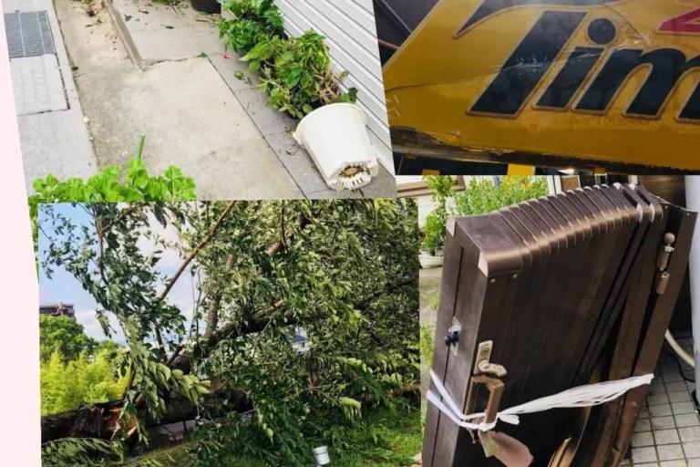 【草津】台風から一夜明け、草津市内の被害の様子が見えてきました。駅は混乱!木の幹が折れ、塀は倒れ、看板が割れている!