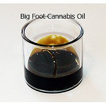 Big Foot II Cannabis Oil