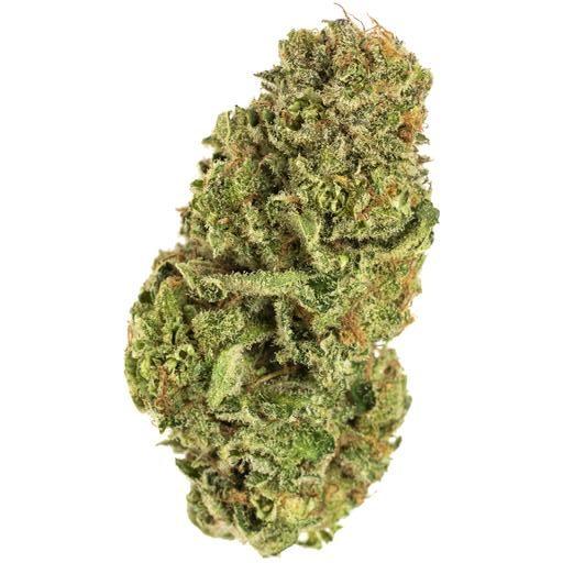 Sativa-Dominant BC ORGANIC BLUE DREAM by Simply Bare THC 20-24% CBD 0-0.03%