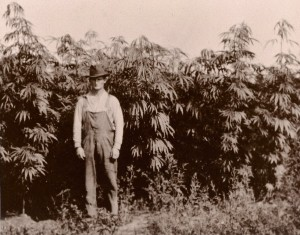 photo_hemp_richards_hemp_farm_in_seney_michigan_f7pw