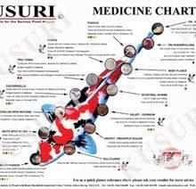 kusuri-medicinal-chart-2014-with-wm-300x300