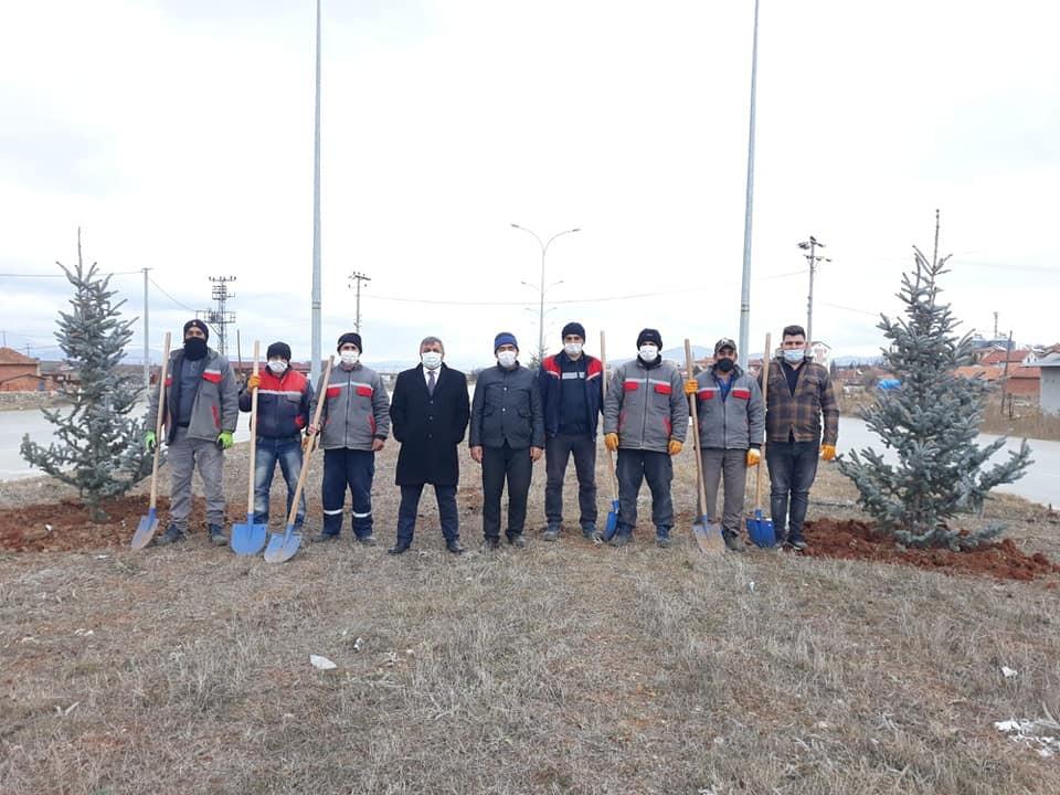 Altıntaş'ta çevre yolu ağaçlandırma çalışmaları