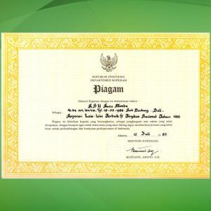 1.Juara I Koperasi Fungsional Tingkat Kabupaten Badung (1990).