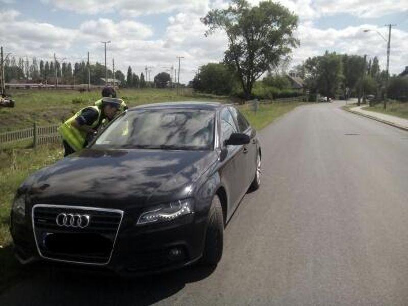 policjanci prowadzą ćwiczenia