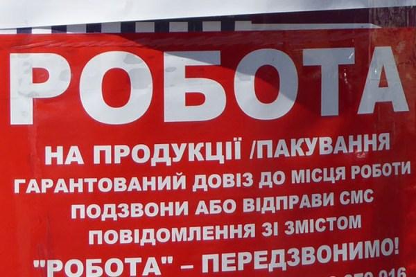 Coraz więcej Ukraińców pracuje w Polsce. Ile zarabiają?