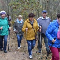 Nordic Walking to dobry relaks (także dla seniorów)