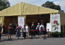 Święto Róży 2020 - ,,nowa normalność'' w Kutnie
