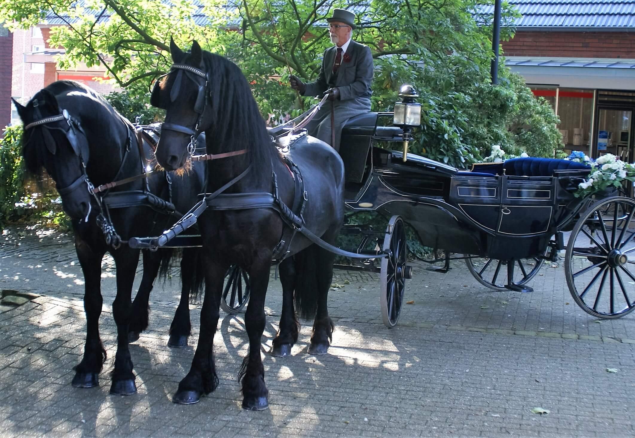 Kutschfahrten Planwagenfahrten Planwagen Hochzeiten In