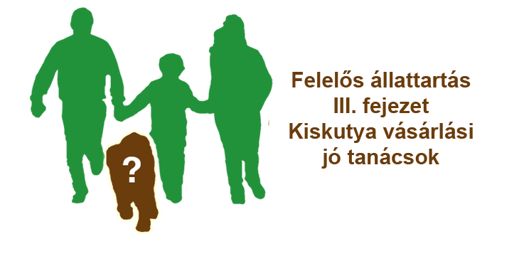 Felelős állattartás III. fejezet - Kiskutya vásárlási jó tanácsok