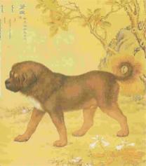 1750 tibeti masztiff by Giuseppe Castiglione