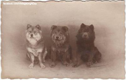 1925-ben chowk