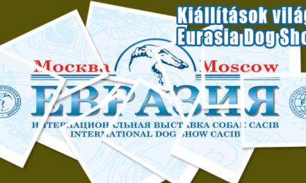 """""""Eurasia"""" – Oroszország legnagyobb kutyás showja"""