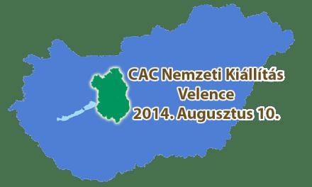 II. Velencei-tó CAC Nemzeti Kiállítás – Velence – 2014. Augusztus 10.
