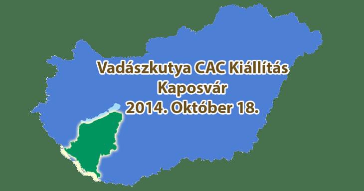 Vadászkutya CAC Kiállítás – Kaposvár - 2014. Október 18.