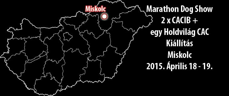 Marathon Dog Show - 2 x CACIB + egy Holdvilág CAC Kiállítás – Miskolc - 2015. Április 18 - 19.