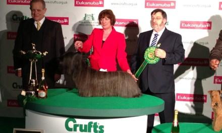 Crufts Dog Show, a kutyák legjobb és legnagyobb ünnepe – 2015. Március 05 – 08. – Birmingham