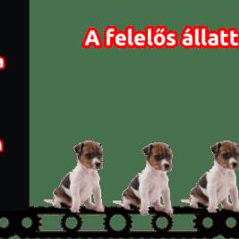 felelős-állattartás-VII