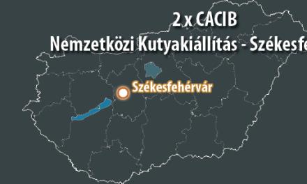 2 x CACIB Nemzetközi Kutyakiállítás – Székesfehérvár – 2015. Június 20 – 21.