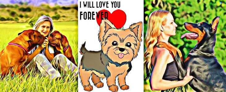 20 jel, melyből tudod, hogy a kutyád nagyon szeret