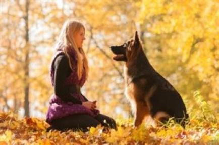 Hűséges Hozzád egy egész kutyaéleten át