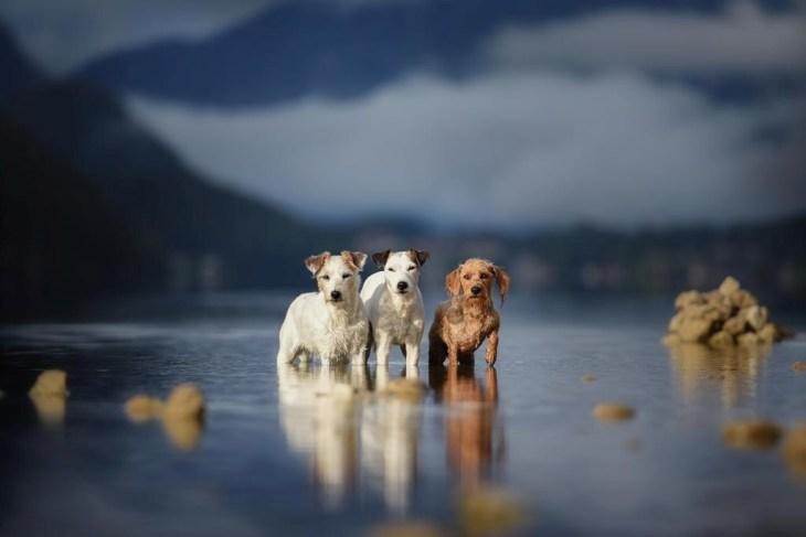Vízi kaland - Paula, Lotti és Elli