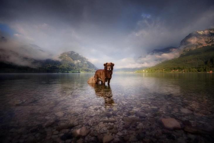 A természet ölelésében