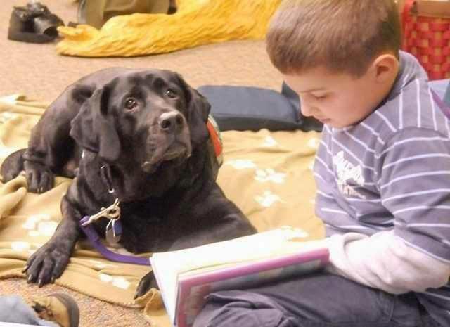 A kutyák segítenek a fiatal olvasóknak bízni