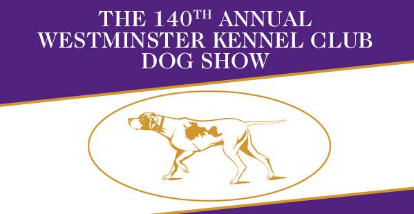 WESTMINSTER DOG SHOW – 2016. FEBRUÁR 15 – 16. – ÉLŐ közvetítés