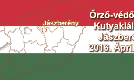 Őrző-védő CAC Kutyakiállítás – Jászberény – 2016. Április 10.