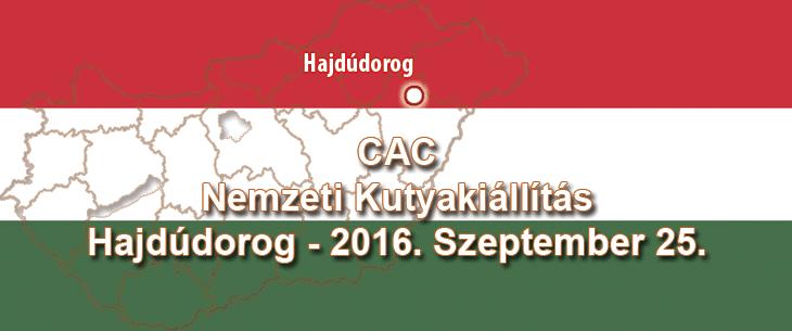 CAC Nemzeti Kutyakiállítás - Hajdúdorog - 2016. Szeptember 25.