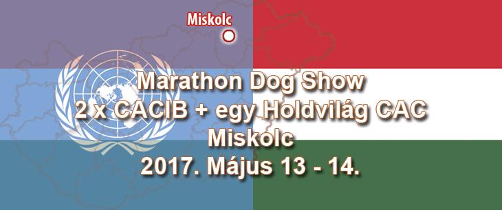 Marathon Dog Show – 2 x CACIB + egy Holdvilág CAC – Miskolc – 2017. Május 13 - 14.
