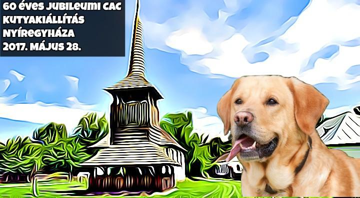 60 éves Jubileumi CAC Kutyakiállítás – Nyíregyháza – 2017. Május 28.