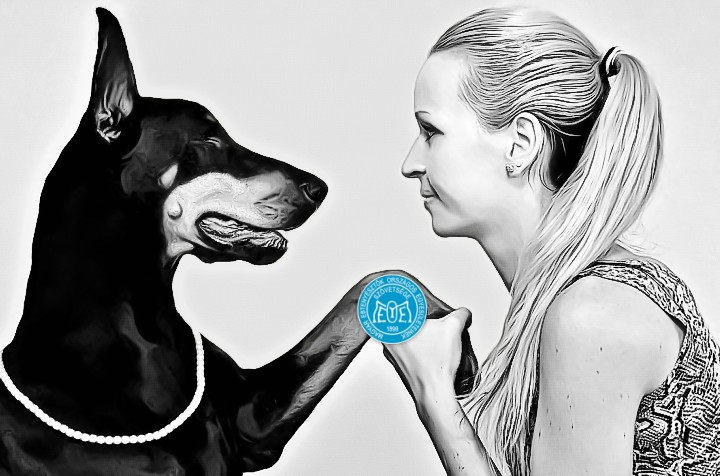 A Magyar Kennel Club Ivartalanítás Támogatási Programot hirdet törzskönyvezett szukák tulajdonosai számára