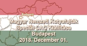 Magyar Nemzeti Kutyafajták Speciál CAC Kiállítása – Budapest – 2018. December 01.