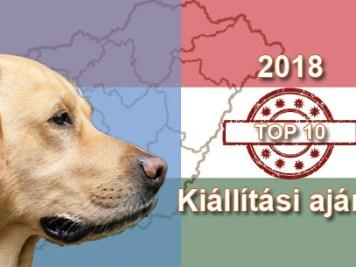 Kutya Portál 2018 TOP 10 kutyakiállítási ajánló