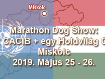 Marathon Dog Show: 2 x CACIB + egy Holdvilág CAC - Miskolc - 2019. Május 25 - 26.