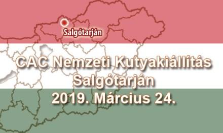 CAC Nemzeti Kutyakiállítás – Salgótarján – 2019. Március 24.