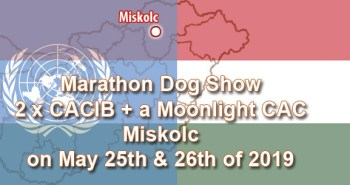 Marathon Dog Show: 2 x CACIB + a Moonlight CAC in Miskolc on May 25th & 26th of 2019