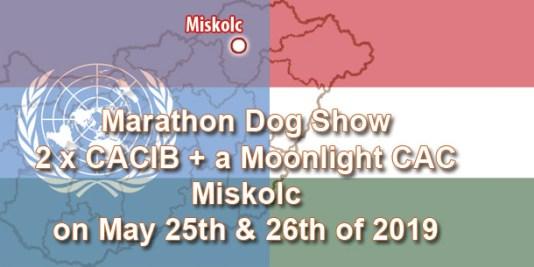 Marathon Dog Show: 2 x CACIB + a Moonlight CAC in Miskolc on May 25th & 26th of 2019